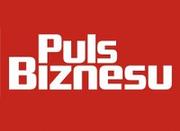 Logo Puls Biznesu