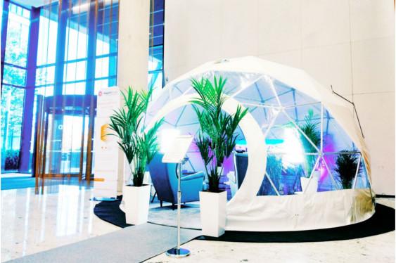 Światłoterapia w firmie Business Lightroom